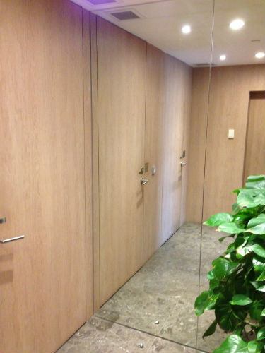 Full height mirrored wall for dressing
