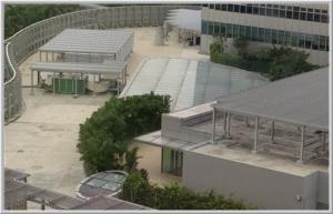 Singapore Glass Roof
